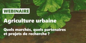 WEBINAIRE - Agriculture urbaine